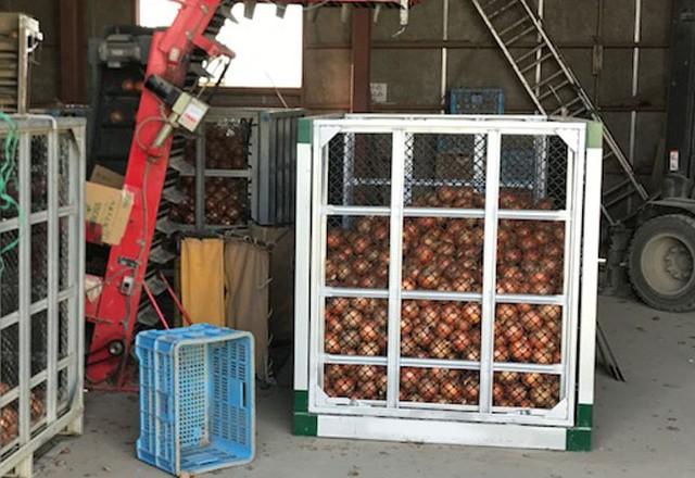 玉ねぎ用スチールコンテナ。生産者さま倉庫にて。