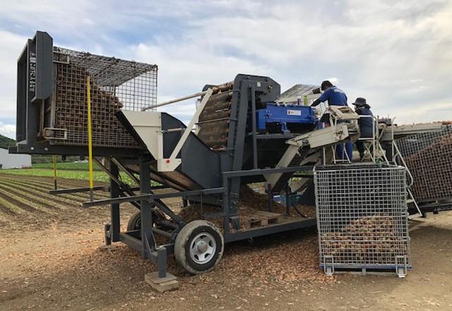 玉ねぎの機械収穫 メッシュタイプ鉄コンテナ