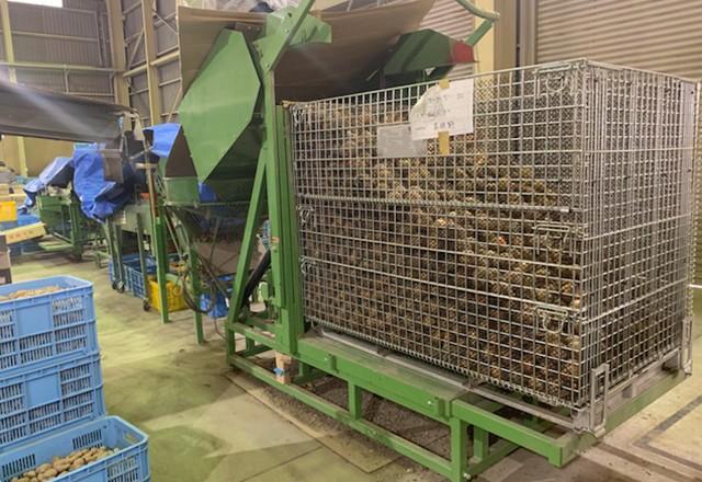メッシュ鉄コンテナM-1 玉葱の収穫/乾燥調製/貯蔵